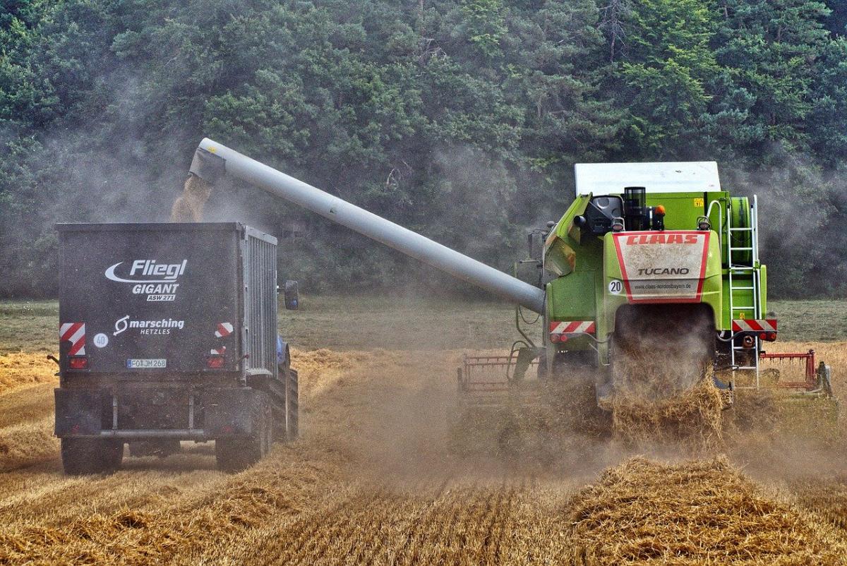 В Казахстане на сегодняшний день собрали более 18 млн тонн зерна - Минсельхоз