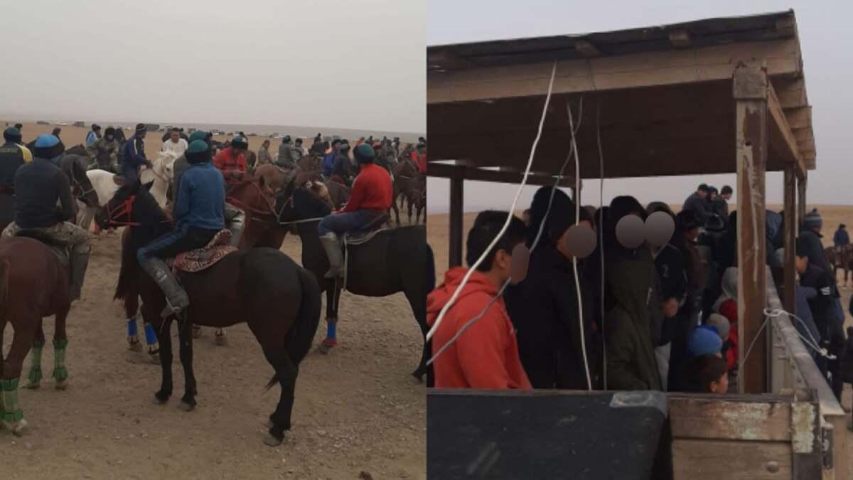 Кокпар на 100 человек в честь поминок устроили в Туркестанской области