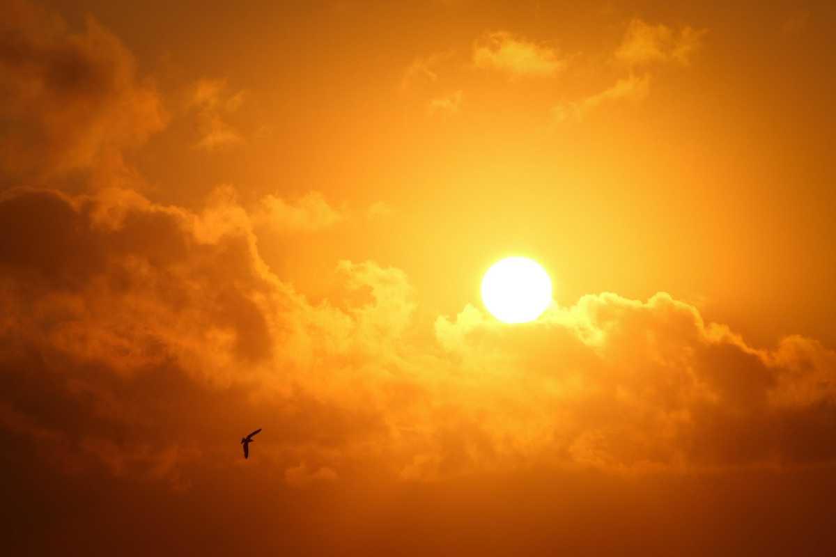 Сильная жара, пыльные бури: в 7 областях объявлено штормовое предупреждение
