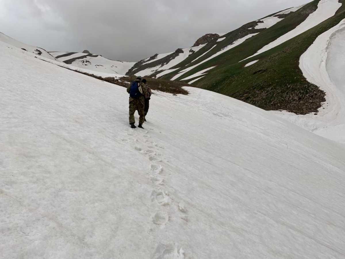 Семь отдыхающих пропали в горах Туркестанской области