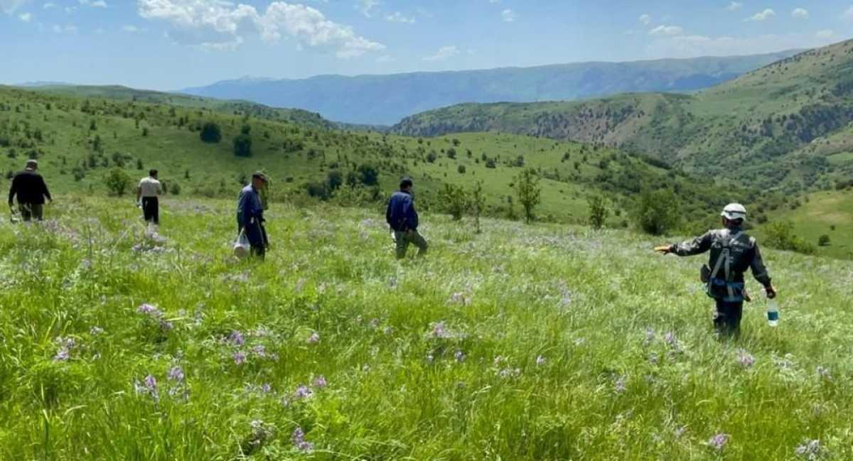 В Туркестанской области вторую неделю продолжаются поиски пропавших в горах туристов