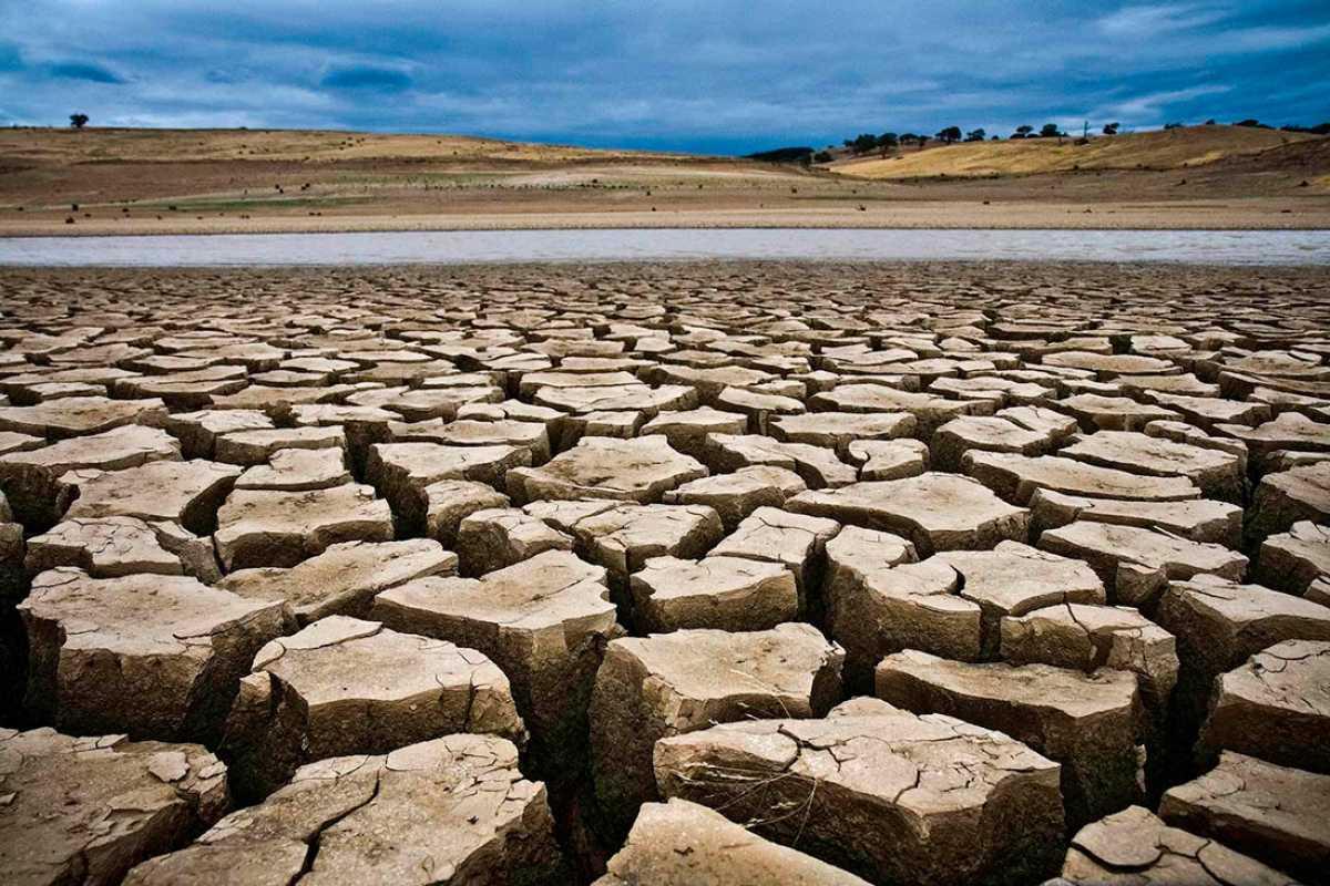 Цены на продукты в Казахстане взлетят из-за засухи на 40% – эксперт