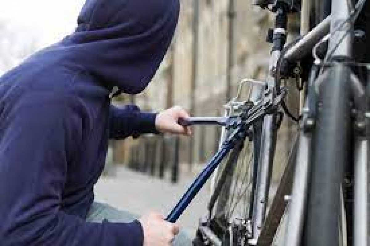Полицейские Меркенского района раскрыли грабеж по горячим следам