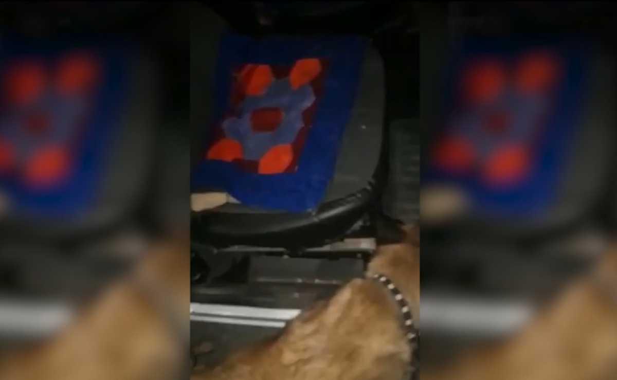 Жамбылские полицейские задержали сбытчика гашиша