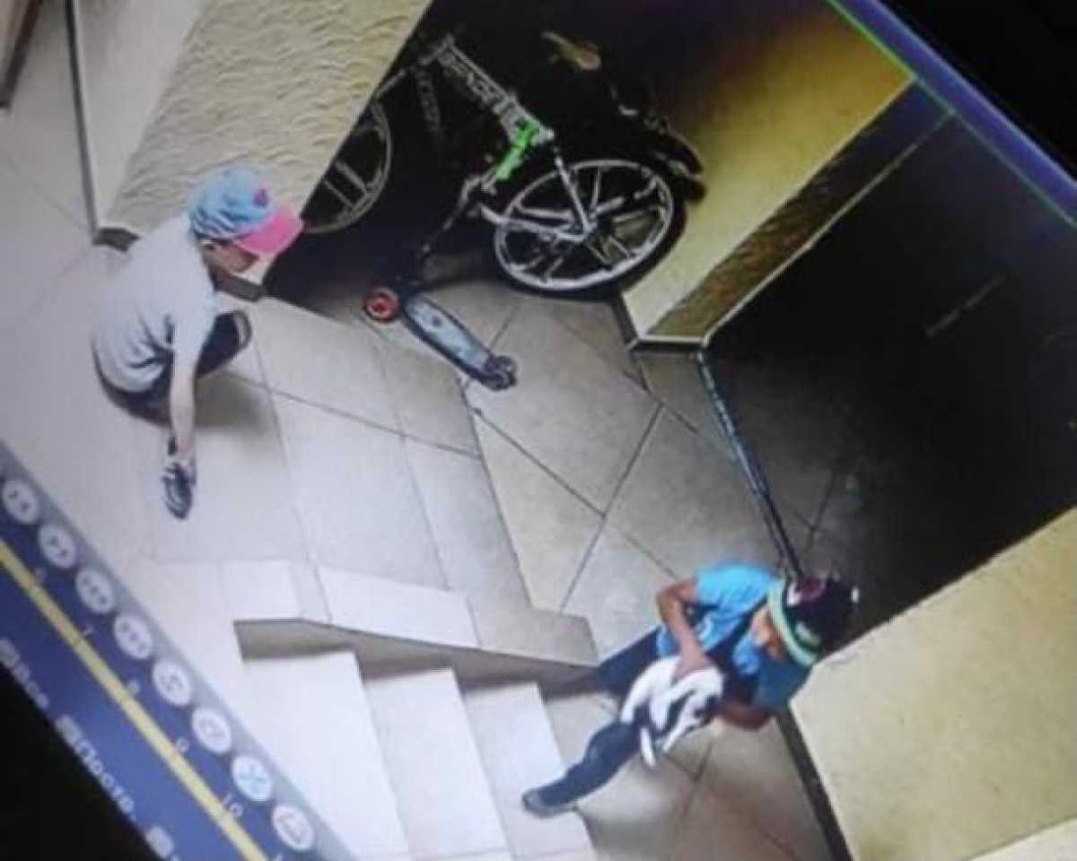 Шестилетние дети выбросили кошку с 9-го этажа в Нур-Султане