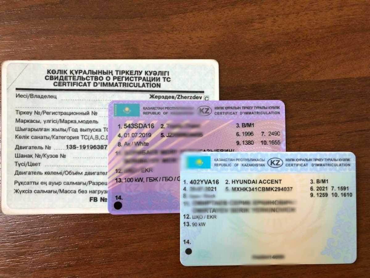 Что делать если потерял водительское удостоверение или техпаспорт