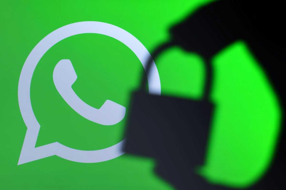 Долгожданная функция появилась в WhatsApp