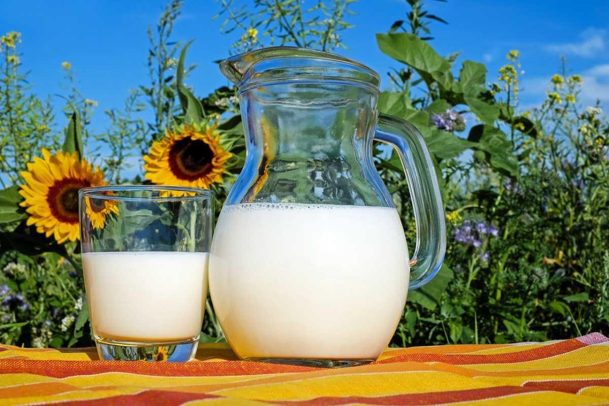 В текущем году потребление казахстанцами сырого молока упало до антирекорда