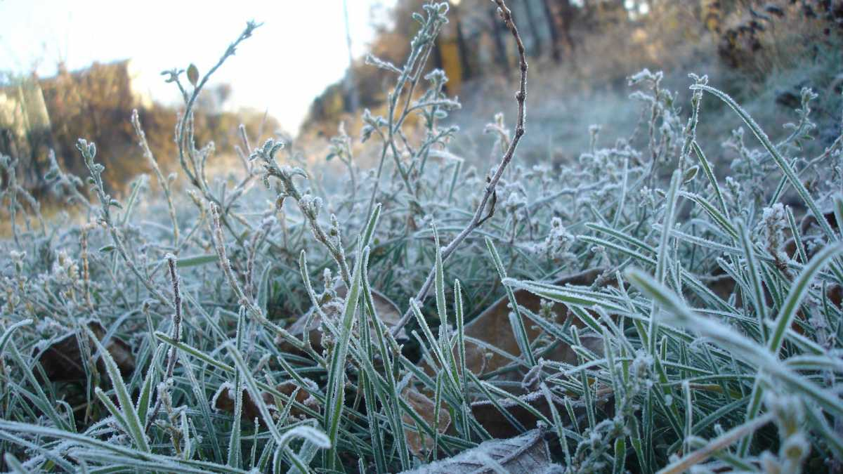 Заморозки, гроза, туман: в 8 областях Казахстана объявлено штормовое предупреждение на 13 сентября