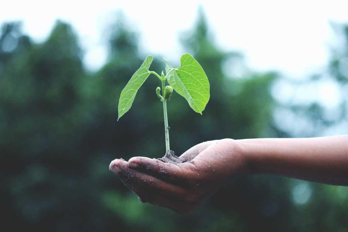 В экологию уже проинвестировали 100 миллиардов тенге